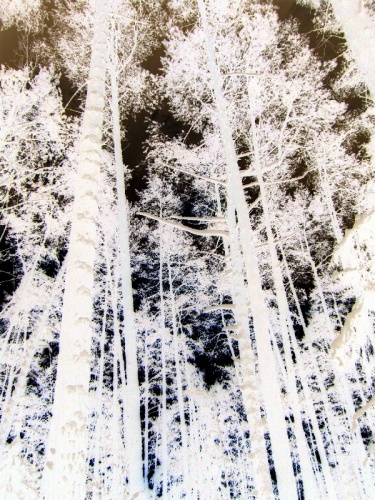 Погода в карачах кировской области нолинского района
